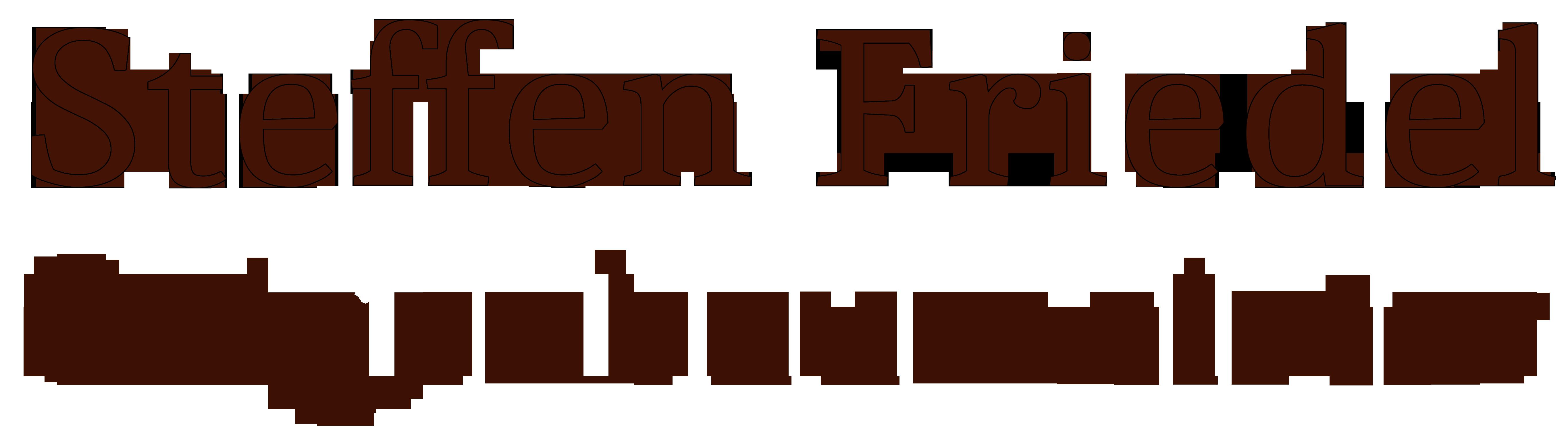 Geigenbaumeister Steffen Friedel