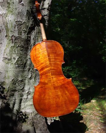 Cello aus eigener Fertigung